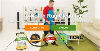 Organic Rug Cleaners