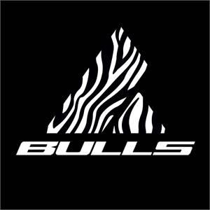 BULLS BIKES USA