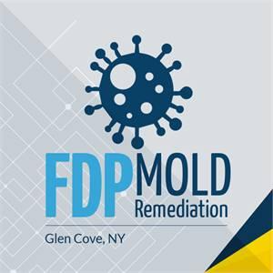 FDP Mold Remediation