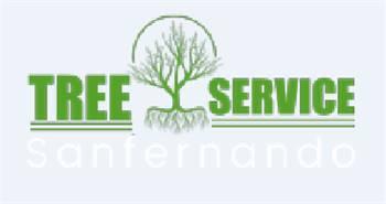 Tree Service in San Fernando Valley
