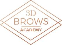 3D Brows Academy